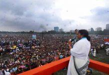 Mamata-Banerjee Brigade