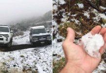 hawaii snowfall
